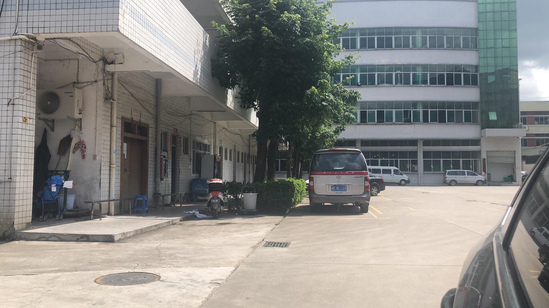 塘厦石鼓龙田路房东厂房一楼800平方出租送办公室